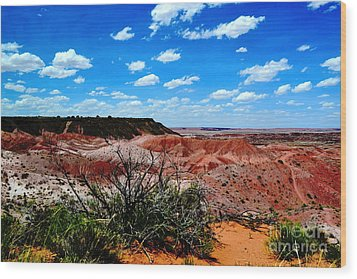 Wood Print featuring the photograph Painted Desert by Utopia Concepts