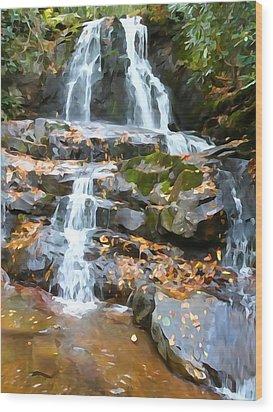 Painted Falls In The Smokies Wood Print by Dan Sproul