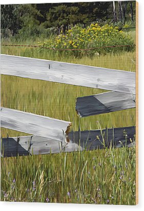 Painted Fence Wood Print by Michele Wright