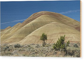 Wood Print featuring the photograph Painted Hills by Sonya Lang