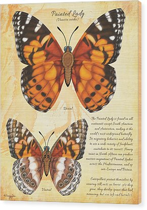 Painted Lady Butterfly Wood Print by Tammy Yee