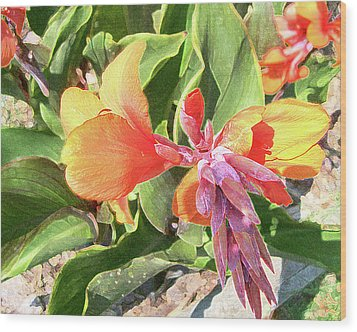 Wood Print featuring the photograph Painted Lily by Larry Bishop