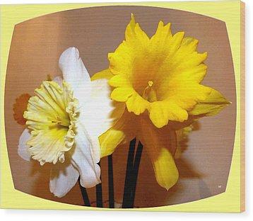 Painted Okanagan Daffodils Wood Print by Will Borden