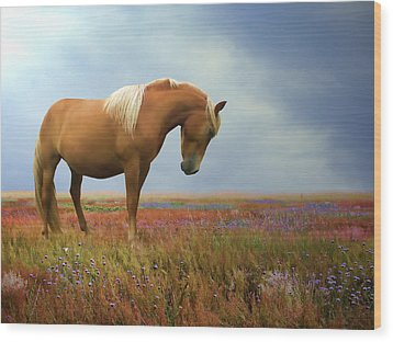 Painted Pastures Wood Print by Sharon Lisa Clarke