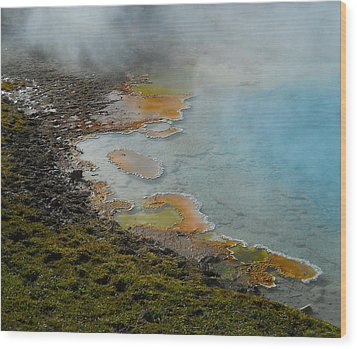 Painted Pool Of Yellowstone Wood Print by Michele Myers