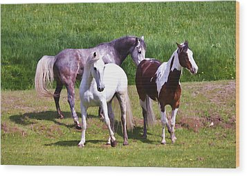 Painted Pretty Horses Wood Print by Athena Mckinzie