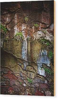 Painted Walls Of Oak Creek No. 1 Wood Print by Dave Garner