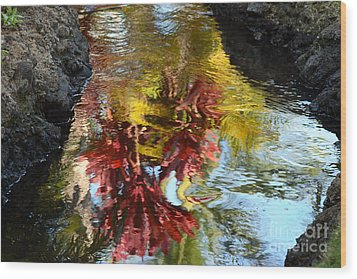 Painted Water Wood Print by Jennifer Apffel