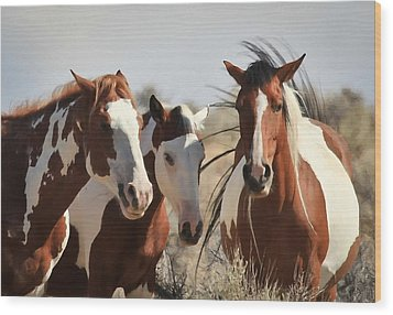 Painted Wild Horses Wood Print by Athena Mckinzie