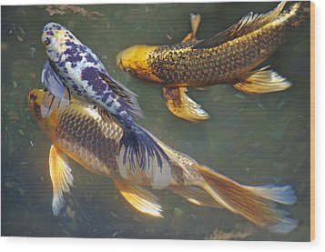 Wood Print featuring the photograph Painterly Fishpond by Adria Trail