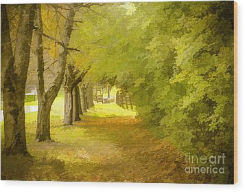 Painterly Pathway Wood Print
