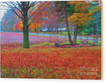 Painting Like Frontyard In Autumn Wood Print by Tina M Wenger