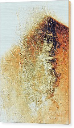 Painting With Shadows Wood Print by Jacqueline McReynolds