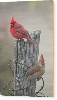 Wood Print featuring the photograph Pair Of Cards by Robert Camp