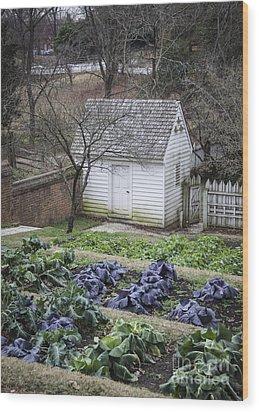 Palace Kitchen Winter Garden Wood Print