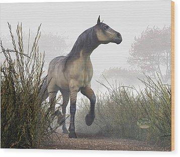 Pale Horse In The Mist Wood Print by Daniel Eskridge