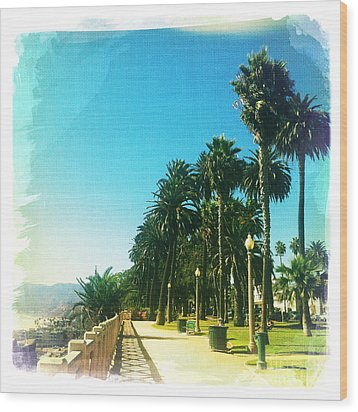 Palisades Park Wood Print by Nina Prommer