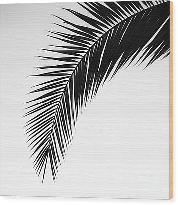 Palm Abstract Wood Print