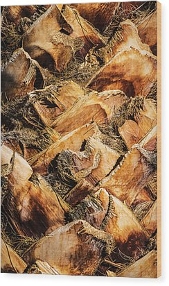 Palm Bark Wood Print