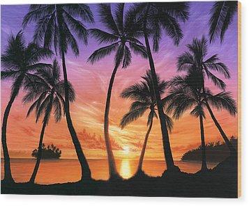 Palm Beach Sundown Wood Print by Andrew Farley