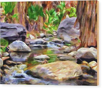 Palm Canyon Trail Wood Print by Michael Pickett