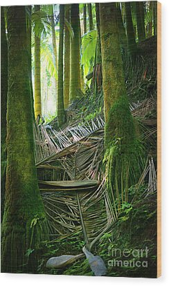 Wood Print featuring the photograph Palm Forest by Ellen Cotton