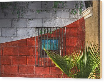 Wood Print featuring the photograph Palm Frond View by Kandy Hurley
