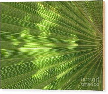 Palm Leaf Wood Print by Nora Boghossian
