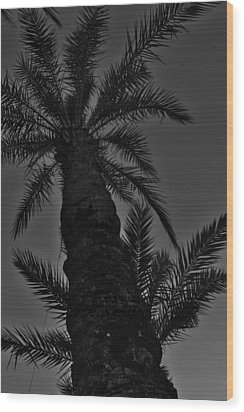Palm Reader Wood Print by Tara Miller