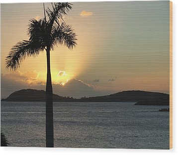Palm Sunset Wood Print by Renie Rutten