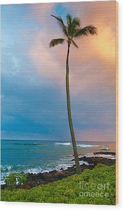 Palm Tree At Sunset. Wood Print