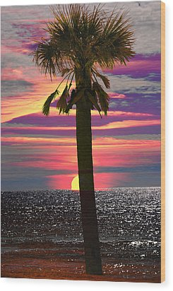 Palm Tree At Sunset Wood Print