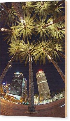 Palm Tree Fireworks Wood Print by Daniel Woodrum