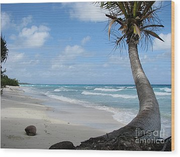 Wood Print featuring the photograph Palm Tree On The Beach by Jola Martysz
