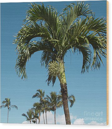 Palm Trees And Blue Sky Wood Print by Sharon Mau