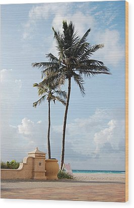 Palm Trees At Sunrise On Hollywood Beach Wood Print by Shawn Lyte