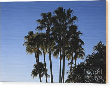 Wood Print featuring the photograph Palm Trees by Chris Thomas