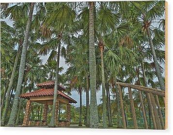 Palm Trees Wood Print by Mario Legaspi