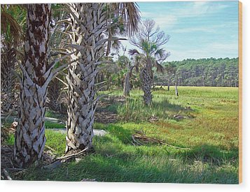 Wood Print featuring the photograph Palm Trees On Hunting Island by Ellen Tully