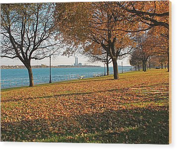Palmer Park In The Fall Wood Print