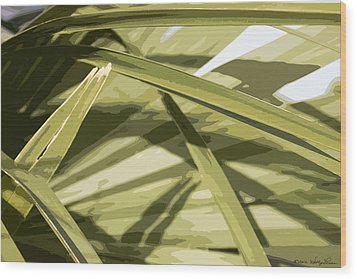 Palmetto I Wood Print by Kathy Ponce