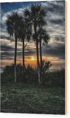 Palms At Sunet Wood Print