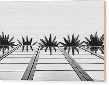 Palms Wood Print by Tammy Espino