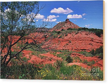 Palo Duro Canyon State Park Wood Print by Thomas R Fletcher