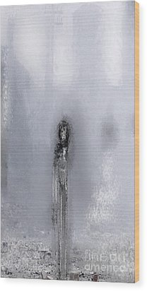 Paloma Wood Print by Rc Rcd
