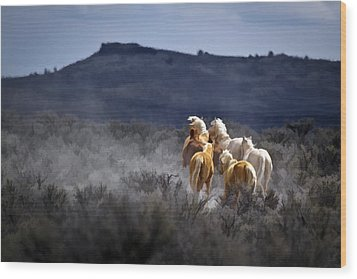 Palomino Buttes Band D1482 Wood Print by Wes and Dotty Weber