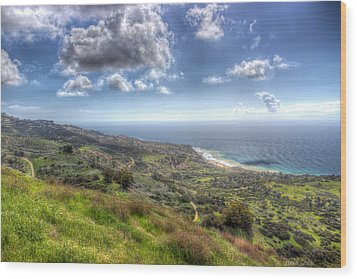 Palos Verdes Peninsula Hdr Wood Print by Heidi Smith