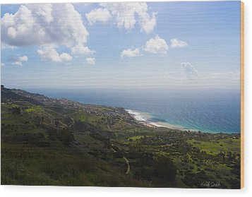 Palos Verdes Peninsula Wood Print by Heidi Smith