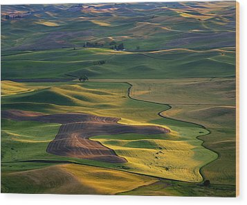 Palouse Shadows Wood Print