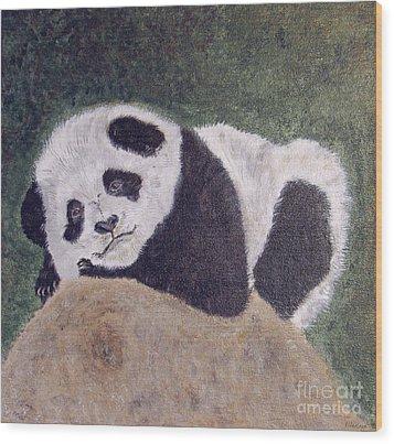Panda Bear Sleepy Baby Cub Wood Print by Ella Kaye Dickey